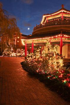 Christmas in Pagoda, Norfolk, Virginia