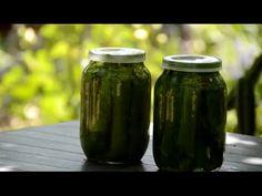 Виноградные листья консервированные. Заготовка листьев винограда