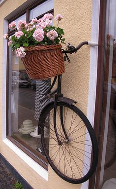 Hanging basket with the bike still attached