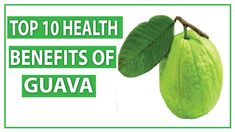 Top 10 Health Benefits of Guava Amazing Benefits for Heart and Weight Loss Guava Benefits, Health Benefits, 10 News, Plant Leaves, Weight Loss, Amazing, Top, Losing Weight, Crop Shirt
