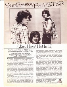 1970's Tiger Beat Teen Magazine Article / Clipping - Peter Barton ...