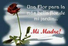 las mejores tarjetas de amor flor