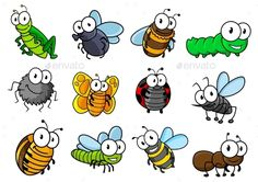 Colorful collection of vector cartoon bugs and insects with caterpillars, ladybug, butterfly, grasshopper, fly, spider, bee, horne