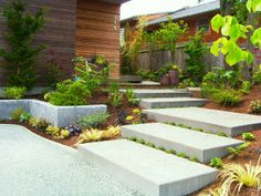 Newly installed poured concrete entry stairs and retaining wall for contemporary home
