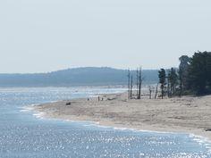fotografia spokojne morze biała plaża krajobraz bałtyk - Google Search