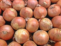 Utah Yellow Sweet Spanish Heirloom Onion Seeds Non GMO Seed Shop, Tomato Seeds, Organic Seeds, Garden Seeds, Garden Boxes, In The Flesh, Utah, Onions