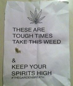 Brooklyn NY: The Weed Fairy Gets Into The Holiday Spirt