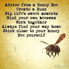 Advice from a busy bee