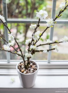DIY Paper Flower Blooming Branches via  http://craftgawker.com/      (Love this site!  Tons of ideas!!!)