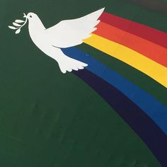 What does this mean? #rainbow #dove #green #peace #Esperanza #Greenpeace #amsterdam.