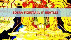 EDERA FIORITA IL 5° BEATLES X Factor 5 ITALIA Italia's Got Talent 3 (Video)