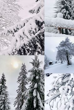 Schnee, Schnee, und noch einmal Schnee ❄️⛄️😍 Special time 💫 Snow, Outdoor, Outdoors, Outdoor Games, The Great Outdoors, Eyes, Let It Snow