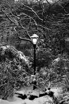 5 uncommon snow photography tips via http://digital-photography-school.com