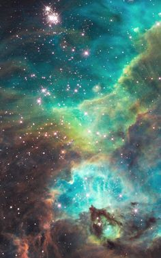 This photo, released by NASA and the European Space Agency to commemorate the Hubble Space Telescope's completion of 100,000th orbit around the Earth in its 18th year of exploration and discovery, scientists have aimed Hubble to take a snapshot of a dazzling region of celestial birth and renewal. In the image, a small portion of the nebula star cluster NGC 2074, located 170,000 light-years away, can be observed.