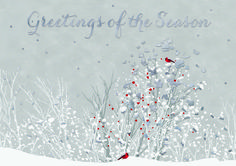 95 best business holiday greetings images on pinterest in 2018 touch of red holiday cards invitations for less featuring a serene winter scene dotted with m4hsunfo