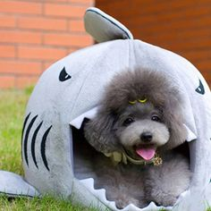 Shark Pet Bed #Under-$50 #For-Pets