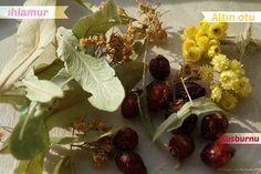 Yağ yakan çay tarifi değerli bilim adamı İbrahim Saraçoğlu na ait.Düzenli kullanıldığında kilo kaybına yardımcı sağlıklı zayıflama ya destek oluyor.Yağları eriten çay olarak da biliniyor. Yağ yakan çay için gereken malzemeler * 10 gram Ihlamur * 10 adet Kuşburnu * 5 gram Altınotu Yağ yakan çay nasıl yapılır Kaynayan bir litre suyun içerisine 10 gram ıhlamur …