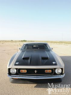 1971 Mustang Mach 1 Maintenance/restoration of old/vintage vehicles: the material for new cogs/casters/gears/pads could be cast polyamide which I (Cast polyamide) can produce. My contact: tatjana.alic@windowslive.com