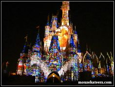 5 Planning Tips on How to Take a Large Group to Disney World Disney Vacation Planning, Disney Vacations, Disney Trips, Disney Cinderella Castle, Disney Castles, Disney Birthday, 50th Birthday, Disney World Trip, Disney Family
