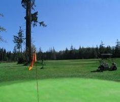 Deer Leap Golf Club on Texada Island is a 9 hole executive course open all year. Sunshine Coast, Golf Clubs, Deer, Golf Courses, Island, Islands, Reindeer