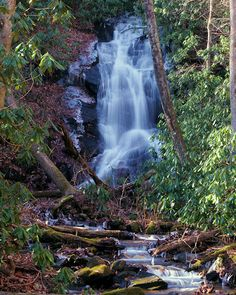 Log Hollow Falls, North Carolina (pinned by haw-creek.com)