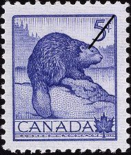 Issued in 1954 for National Wildlife Week (yep! only a week) this Canada stamp features a big brown beaver (which according to the group Primus is called Wynona) although she does look sad and blue, rather than brown, here. Might just be a porcupine! Canadian Memes, Canadian History, North American Beaver, Wildlife Art, Wildlife Week, Newfoundland And Labrador, Thinking Day, Rare Coins, Mail Art