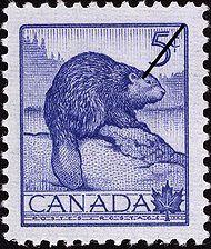 canada, beaver