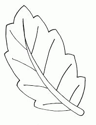 Image Result For Leaf Outline Printable