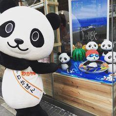和歌山のアンテナショップができてたなぜかパンダ#wakayama #antenashop #panda #new #ningyocho #mikan
