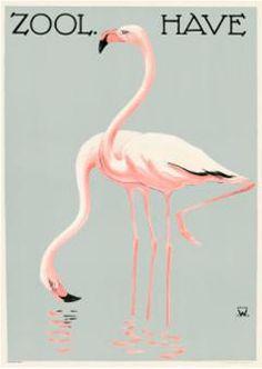 zoo have flamingo poster Flamingo Print, Pink Flamingos, Copenhagen Zoo, Animal Graphic, Georges Braque, Poster Prints, Art Prints, Poster Pictures, Max Ernst