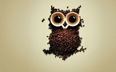 Coffee-Funny-Cups-Owls-Coffee-Beans.jpg (1920×1200)