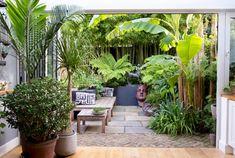 Small Jungle Garden Ideas, Garden Ideas Uk, Garden Inspiration, Yard Ideas, Small Urban Garden Design, Tropical Garden Design, Garden Landscape Design, Small Tropical Gardens, Tropical Backyard