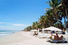 Le 35 spiagge di Isla Margarita (1 ) Playa El Agua Rappresenta l'emblema del turismo di Isla Margarita. In assoluto la più visitata, è caratterizzata da bellissime palme da cocco, una sabbia bianca...