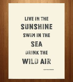 Wild Air Art Print by MIXT Studio on Scoutmob
