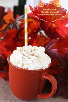 Pumpkin spice white hot chocolate recipe~ Perfect for fall!
