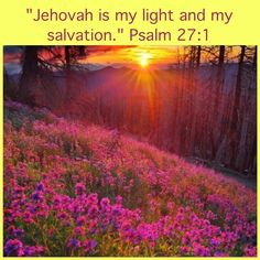 """The metaphor """"Jehovah is my light"""" draws attention to the fact that Jehovah frees us from ignorance and spiritual darkness. A literal light may reveal a danger or an obstacle on our pathway, but it does not remove it. We must act wisely on what we see."""