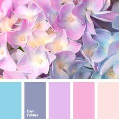 Springtime Delicate Palette Of Pastel Shades Created, Including Lavender, Pink, Blue, Muted Gray-Blue. The Palette Can Be Used To Create A Romantic & Feminine As Well! Colour Pallette, Colour Schemes, Color Combos, Beautiful Color Combinations, Lavender Color Scheme, Lilac Color, Gray Color, Palette Design, Design Seeds