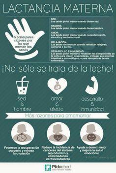 La pediatria del dia a dia: Lactancia materna
