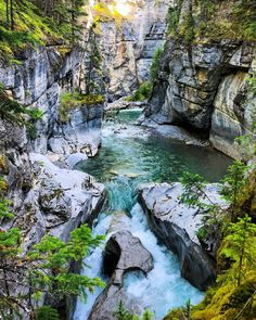 Beautiful Sites, Beautiful Places, Banff National Park, National Parks, Places To Travel, Places To Visit, Forest Waterfall, Canada Destinations, Canadian Rockies