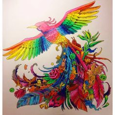 Rainbow bird wings