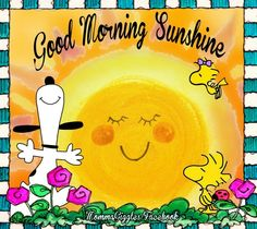 SNOOPY & WOODSTOCK~GOOD MORNING SUNSHINE