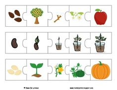 Life Cycles Puzzles and Posters {9 LIFE CYCLES!} by TeachingResourceResort | Teachers Pay Teachers Pete The Cats, Flannel Friday, Flannel Boards, Sequencing Activities, Author Studies, Art Lessons Elementary, Hungry Caterpillar, Life Cycles, Art Education