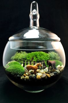 A personal favorite from my Etsy shop https://www.etsy.com/listing/255788534/equestrian-horse-moss-terrarium