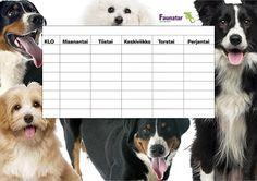 Tulosta eläinaiheinen lukujärjestys | Faunatar Dogs, Animals, Diy Photo Album, Animales, Animaux, Pet Dogs, Doggies, Animal, Animais