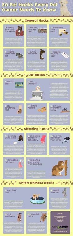 Dog Training for Dummies - CLICK THE PIC for Various Dog Obedience and Care Ideas. #doglovers #dogtraining