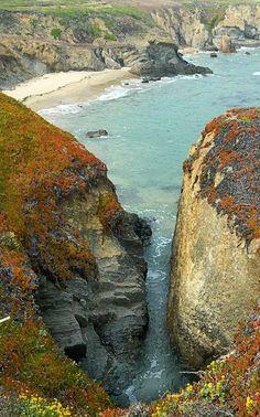 California coast just north of Santa Cruz by Ron Regalado
