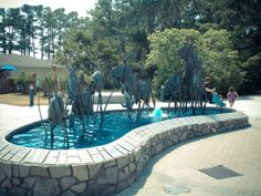 North Carolina Aquarium at Roanoke Island - Manteo, NC  http://www.pirates-cove.com/