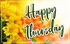 Beautiful Happy Thursday Image edited with yellow flowers background for Wish Someone A Beautiful Happy Thursday. Happy Thursday Images, Wishes Images, Image Editing, Yellow Flowers, Neon Signs, Beautiful, Editing Pictures