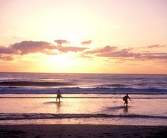 Gold Coast; beaches in Surfers Paradise. http://www.ozehols.com.au/holiday-accommodation/queensland/gold-coast-area