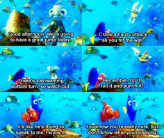 Quotes From Finding Nemo finding nemo, quote, quotes